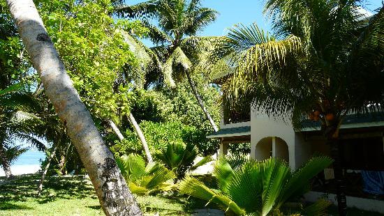 Indian Ocean Lodge: Jardin et mer