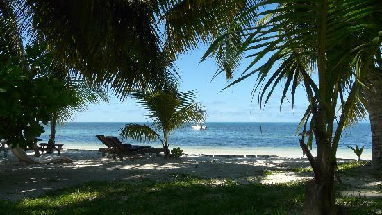 Indian Ocean Lodge: Jardin et plage