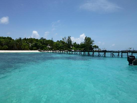 Lankayan Island Dive Resort: View of island from the jetty