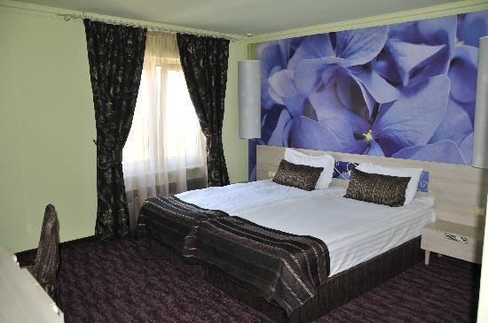 Hotel Adler Winningen: Double room