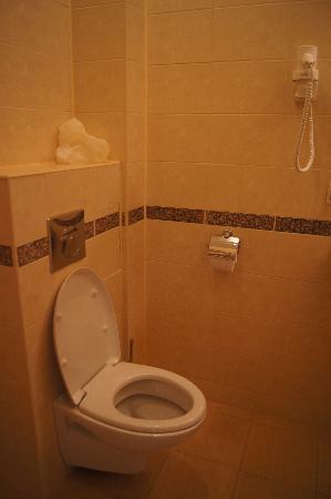 Aston Hotel : bathroom