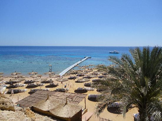 Reef Oasis Beach Resort : The beach