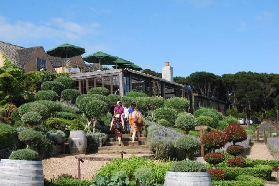 Waiheke Island, New Zealand: Mudbrick Vineyard
