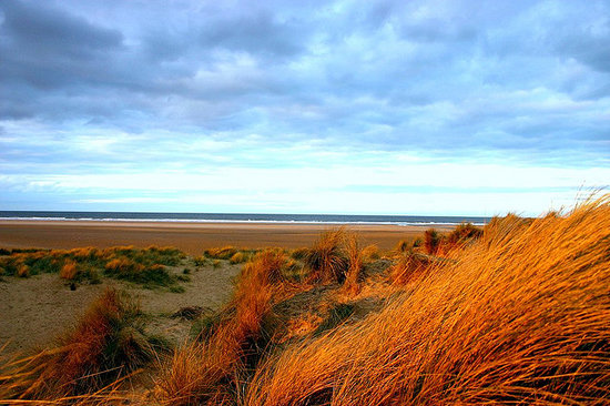 Wells-next-the-Sea, UK: Holkham Dunes