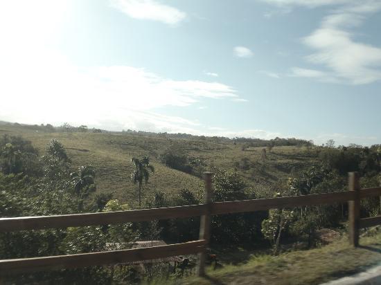 Hacienda El Jibarito: back view