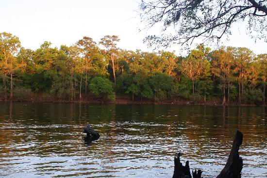 The Smoakhouse Ranch: Fun on the Swanee river