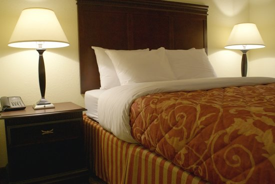 Anderson Extended Stay Hotel : Queen Suite