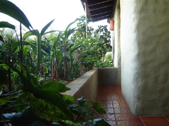Hotel Casa Marta: balcony
