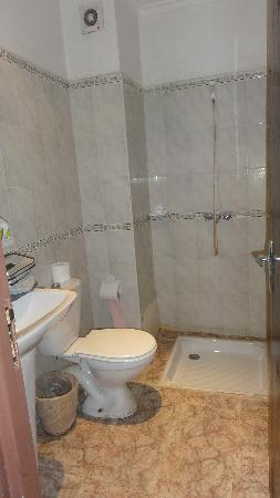 Salle de bain douche et toilettes photo de hotel nadia for Transformer un bain en douche