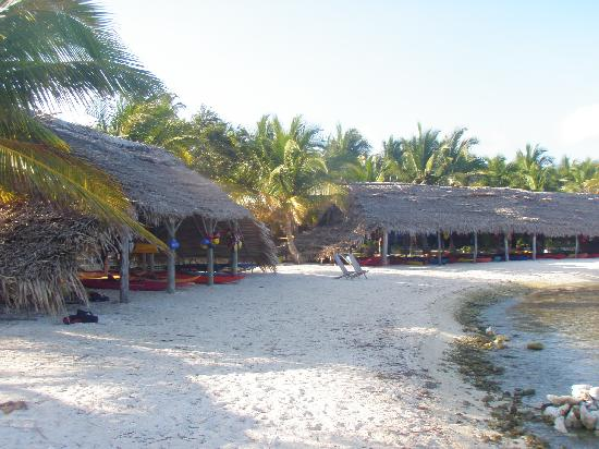 Long Caye Resort: Shed for the Kayaks, SUPS, windsurfers