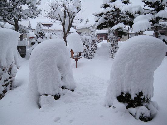 Sapporo, Japan: 冬の札幌