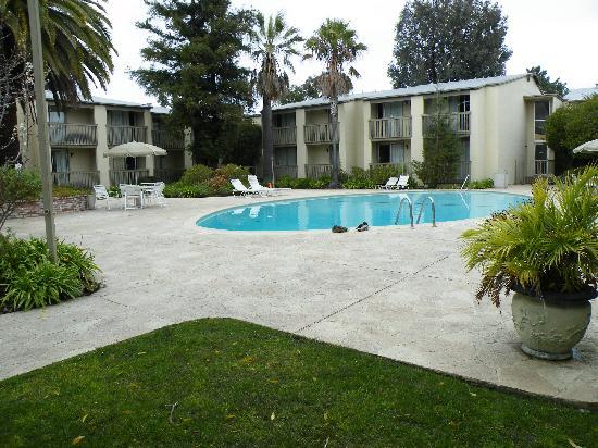 Good Nite Inn - Redwood City: Pool, and ducks!