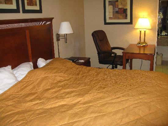 Quality Inn & Suites Airport / Cruise Port South: Bedroom