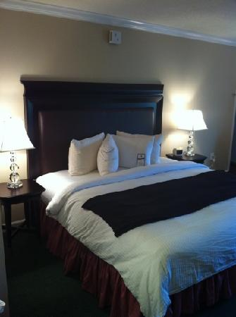 Lynchburg, VA: King size bed, super clean room!