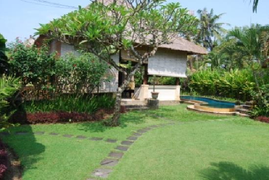 Balivillas.com Estate: Walkway from entrance to villa