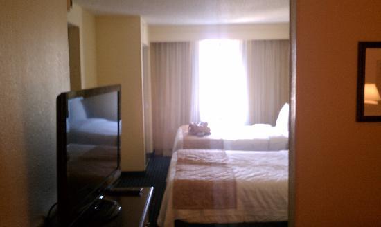 SpringHill Suites Jacksonville : Room 519