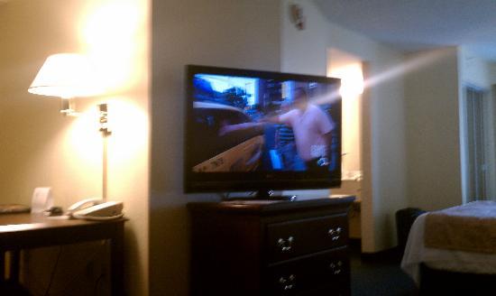 SpringHill Suites Jacksonville: Huge TV