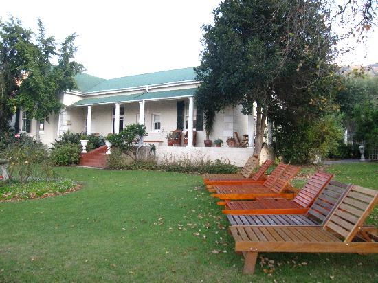 Montagu Vines Guesthouse: The yard