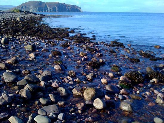 Kintyre Cottages 사진
