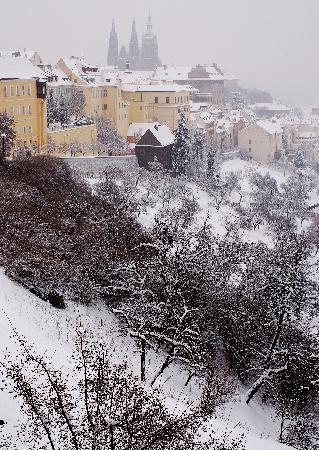 قلعة براج: Castle from Petrin Hill