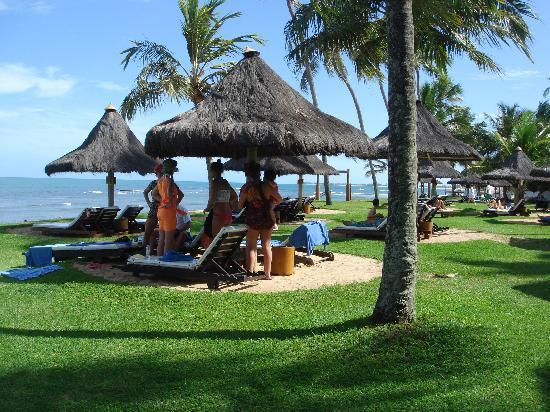 Tivoli Ecoresort Praia do Forte: Landscape