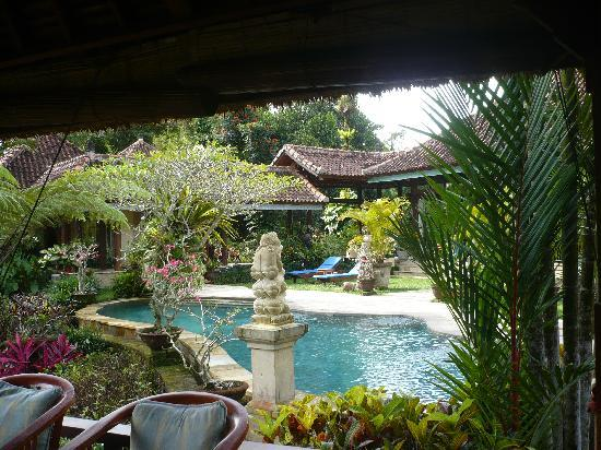 Villa Orchid Bali: Blick auf den Pool der Villa Orchid