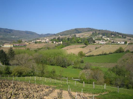 Domaine de Monsepeys: Emeringes and surrounding countryside