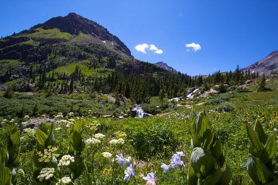 Awe-inspiring hikes in Ouray County (photo:  K. Scheidegger)