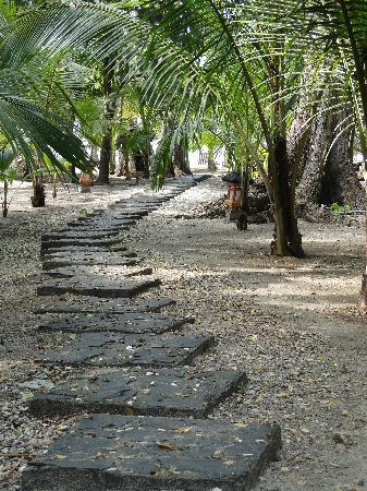 Ranchos Itauna.