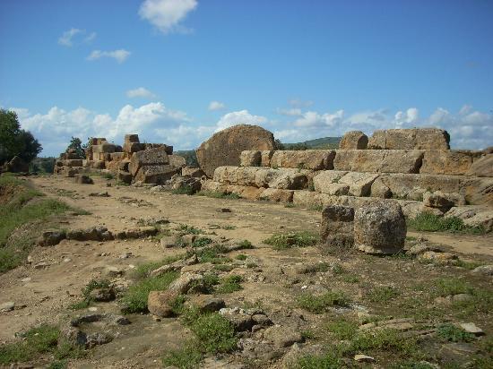 Tempio di Giove Olimpico: More ruins of the Temple of Zeus.