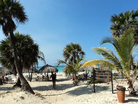 Hotel Roc Arenas Doradas: beach by the ocean