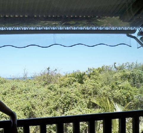 HOTEL CAP MACABOU: canopée de l'hotel et mer