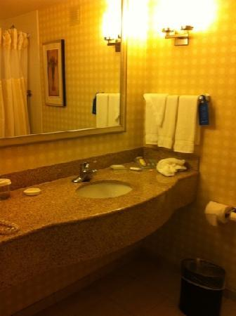 Hilton Garden Inn Hamilton: bathroom