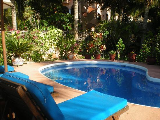 Casa de La Sirena: Nuestra alberca privada