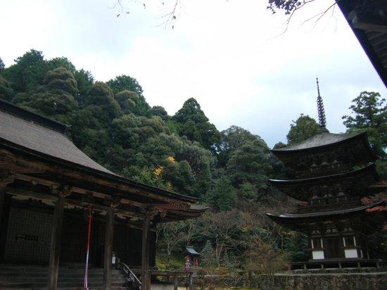 Kora-cho, Japonia: 境内