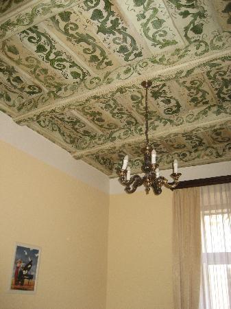 Cerny Slon: Stunning Ceiling