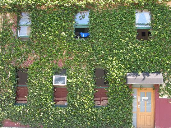 The Corkman Irish Pub Hostel: outside