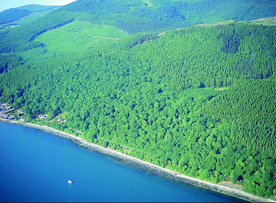 Newcastle, UK: Rostrevor Forest Kilbroney
