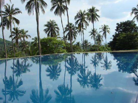 Brook Boutique Hotel & Spa : THE SWIMMING POOL