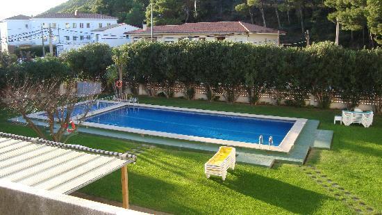 Hotel Flamingo: piscine de l'hotel