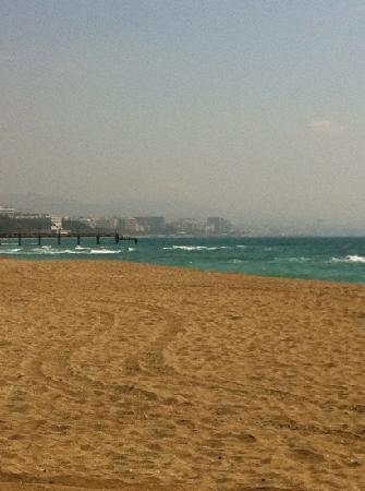 Alanda Hotel Marbella : the beach