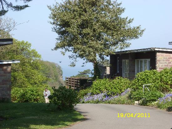 Combe Martin Beach Holiday Park: 'hills'