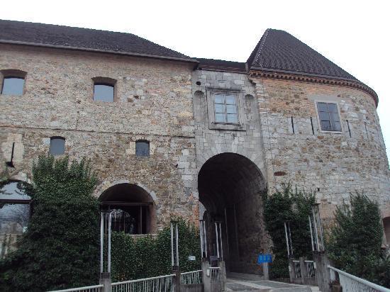 ليوبليانا, سلوفينيا: Castle