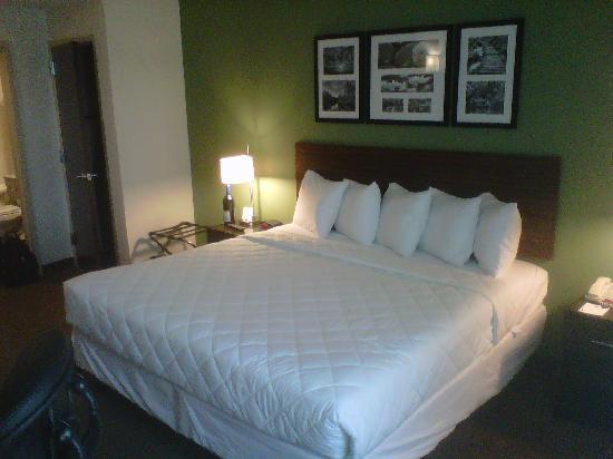 Sleep Inn & Suites Downtown Inner Harbor: View from window