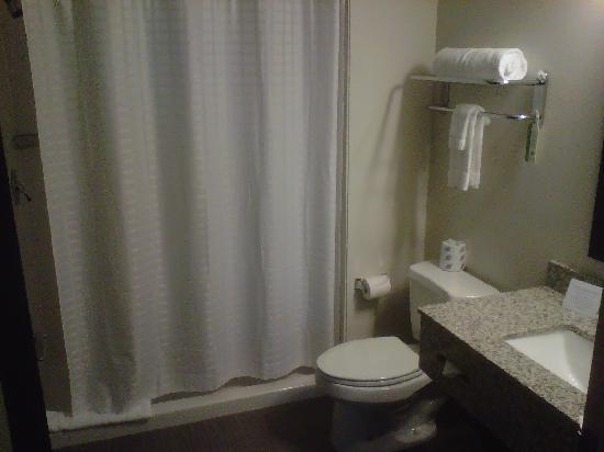 Sleep Inn & Suites Downtown Inner Harbor: Large bathroom, floor shower