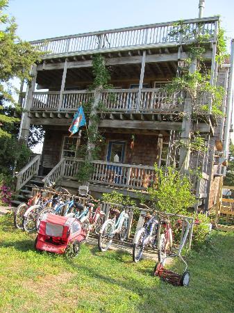 Pam's Pelican Bed & Breakfast: Pam's Pelican B&B in Ocracoke