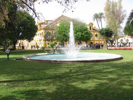 Fundación Real Escuela Andaluza del Arte Ecuestre: Fountain on the grounds