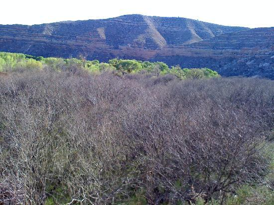 Flying Eagle Country Bed & Breakfast: View from Railcar on Verde Canyon Railroad