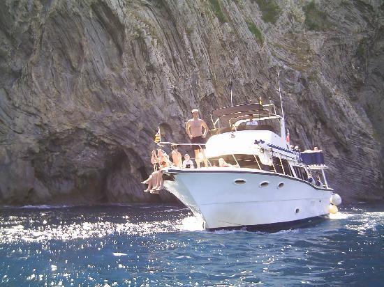 Premier Cruises
