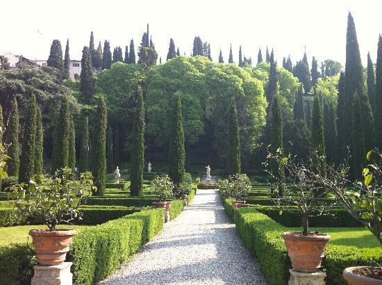 Palazzo Giardino Giusti: Hedges and statutes